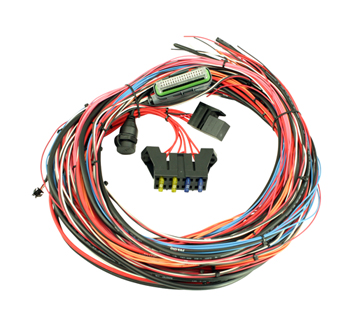 "AEM EMS-4 96"" Wiring Harness with Fuse & Relay Panel 30-2905-96"
