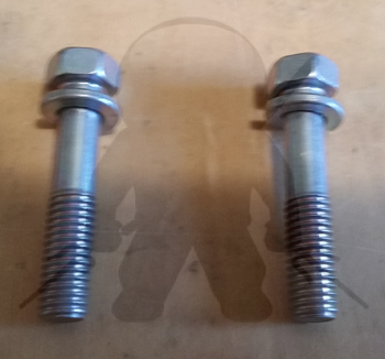 Mitsubishi OEM 6G72 DOHC Fuel Rail Bolts Set of 2